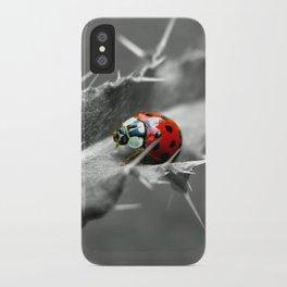 ladybug I iPhone Case
