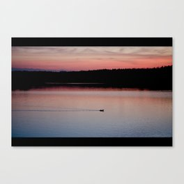 alone again Canvas Print
