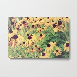 Rudbeckia - Cone Flower - JUSTART © Metal Print