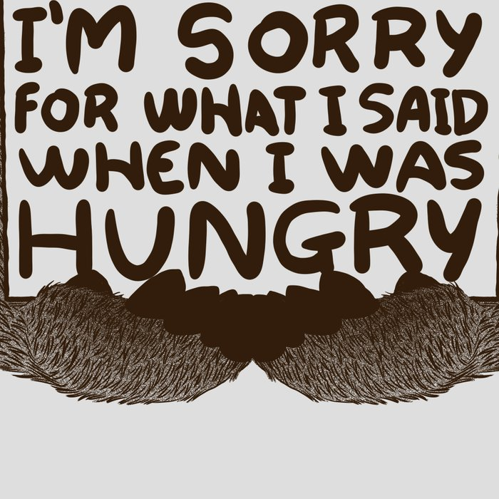 I'm Sorry For What I Said When I Was Hungry Leggings