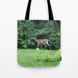Caught Unaware (Deer) Tote Bag