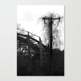 Lincoln Park Coaster Canvas Print