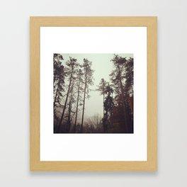 ShadesOfForest Framed Art Print