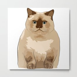 Fluffy CAT Metal Print