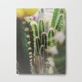 Shopping for Cacti Metal Print