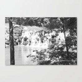 B &W waterfall Canvas Print