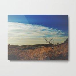 New Buffalo Tree Metal Print