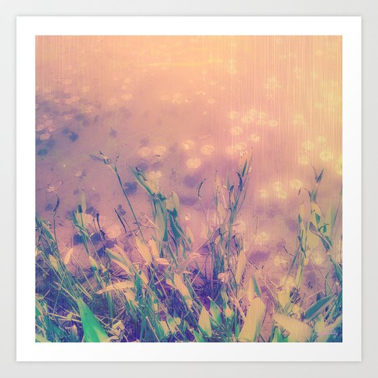 Lotus Pond and Spring Sunshine Art Print