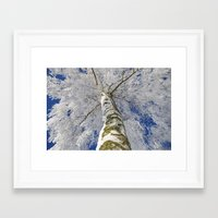 john snow Framed Art Prints featuring Snow worlds by Tanja Riedel