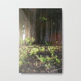 Into the Banyan Tree Metal Print