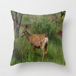 Breakfast At Mesa Verde Throw Pillow