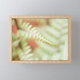 Fern 13 Framed Mini Art Print