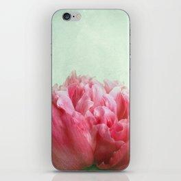 skykissed iPhone Skin