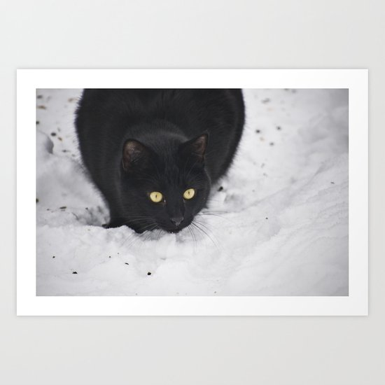 Black cat in a snow Art Print
