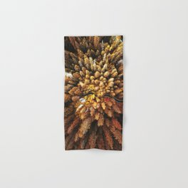 autumnal forest with winding road Hand & Bath Towel