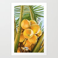 coconut wishes Art Prints featuring Coconut by The Art of Vancuf