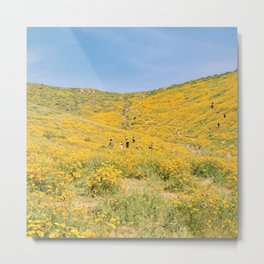 Lake Elsinore poppy fields Metal Print