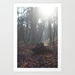 Stumped Art Print