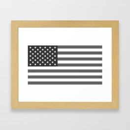 American flag in Gray scale Framed Art Print