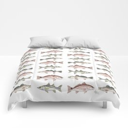 Pattern: Inshore Slam ~ Redfish, Snook, Trout by Amber Marine ~ (Copyright 2013) Comforters