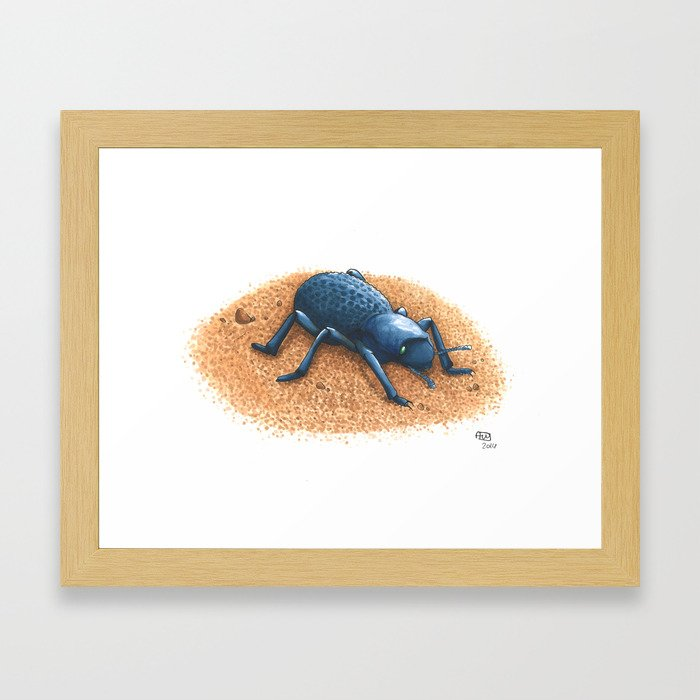 Blue Death Feigning Beetle Framed Art Print