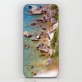 Lions Head iPhone Skin