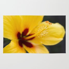 Boreas Tropical Hibiscus Lemon Drop Rug