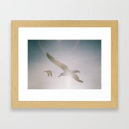 We are free Framed Art Print