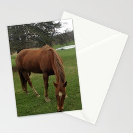 Horses in the Catskills, New York Stationery Cards