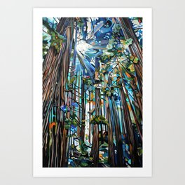 Golden Cedars Art Print