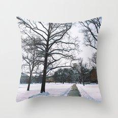 The Frozen Quad Throw Pillow