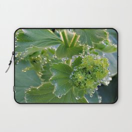 Ladies Mantle Laptop Sleeve