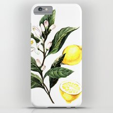 Lemon Slim Case iPhone 6 Plus