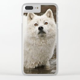 Oh my love where have you gone Clear iPhone Case