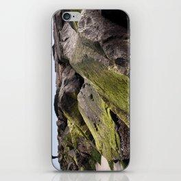 Fishin' on the Rocks iPhone Skin