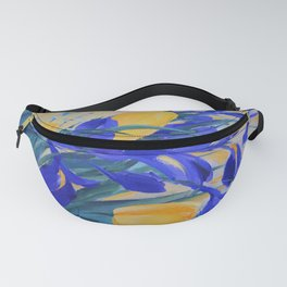 ABOUT SPRING Fanny Pack