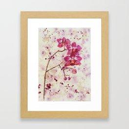 beauTEAful blooms: Orchids Framed Art Print