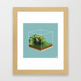 Sleepy Bear Framed Art Print