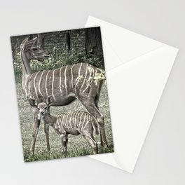 Kudu Antelope Mother with Baby, Muted Color Stationery Cards