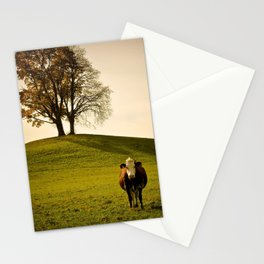Marguerite Stationery Cards