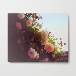 Benicia Rose Metal Print