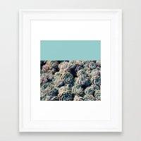 succulents Framed Art Prints featuring Succulents by Leah Flores