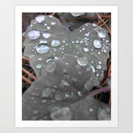 color pops: Morning Dew Art Print