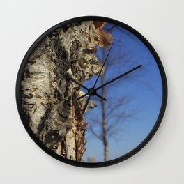 River Birch Bark up against the blues Wall Clock