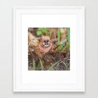 ewok Framed Art Prints featuring Ewok by iFallForward