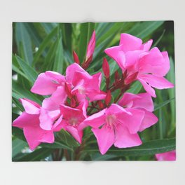 Pink Oleander Bouquet Closeup  Throw Blanket