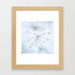 Beautiful Dry Flower with Ice Crystals #decor #buyart #society6 #holiyay Framed Art Print