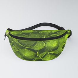 Pod Abstract Yellow Green Fanny Pack