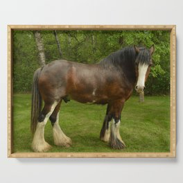 Clyde the Clydesdale Serving Tray