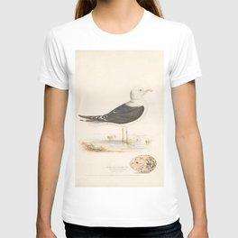 Lesser black-backed Gull, larus fuscus5 T-shirt
